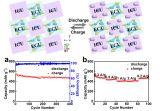 上海硅酸盐所钠基氧硫化合物的结构设计和钠离子电池的低成本应用研究中取得新进展
