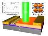 长春光机所等研制出高灵敏度钙钛矿单晶-石墨烯复合垂直结构光电探测器