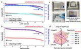 宁波材料所高能量密度锂电池研究获进展